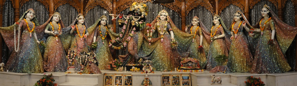 Image result for radha madhava mayapur