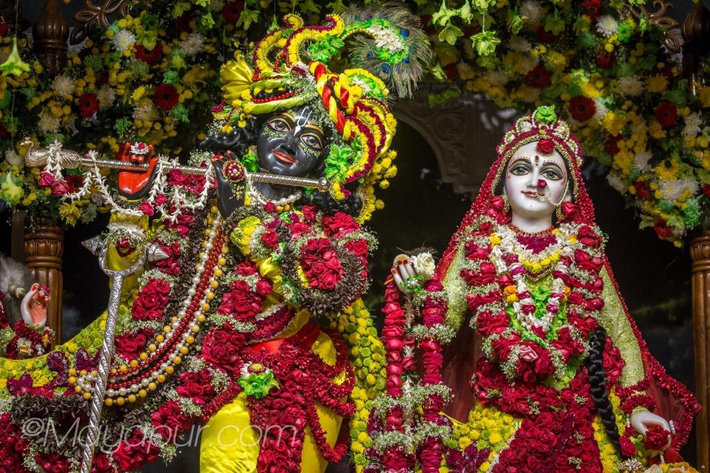 sri radha-madhava flower outfits darshan